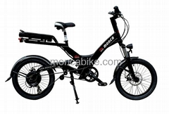 Folding Electric Bike with 8Fun Motor