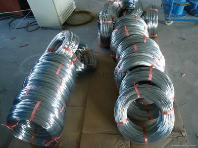 安普丝网镀锌钢丝 2