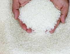 Long Grain White Rice 25% broken