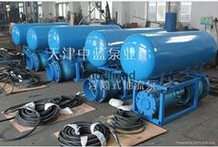 天津中藍浮筒潛水泵專利