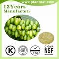 Green Coffee Bean Extract Chlorogenic Acid 50% 2