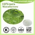 Stevia Extract 100% Natural Sweetener