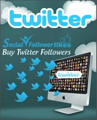 Buy 2000 Twitter Followers
