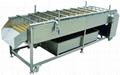 HP-360 industrial Fruit Washing Machine