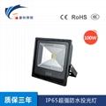 IP65超強防水投光燈-100