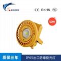 IP65出口防爆投光燈-50W