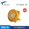 IP65防爆投光燈