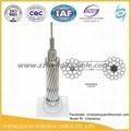 ACSR架空輸電線路用鋼芯鋁絞