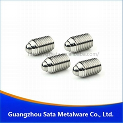 SS 304 ball spring plunger screw