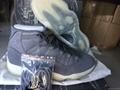 """Authentic Air Jordan 11 Premium """"Suede"""""""