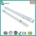 4FT 40W IP65 LED Linear Light