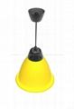 30W Yellow shell LED Light fruit