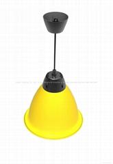30W Yellow shell LED Light fruit lighting M3