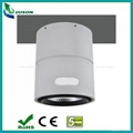 IP66 Surface Mounted LED Down Light 30W
