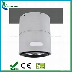 IP66 Surface Mounted LED Down Light 30W (Hot Product - 1*)