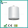 50W Surface Mounted LED Down Light