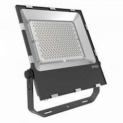 Good price good quality SMD 200W LED floodlight with MeanWell LED Driver