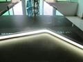 DC5V Anti dust IP67 RGB neon led light for KTV lighting