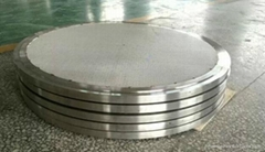 SS316L Pharmaceutical porous stainless steel sintered filter plate