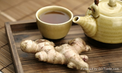 Wholesale fresh Ginger  in China Markrt