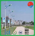 Applied in Africa 9m 45W Q235 Post Lamp