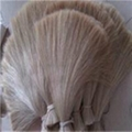 Horse tail hair 2