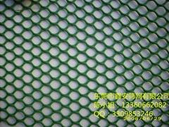 东莞鑫安筛网直销各种颜色塑料网