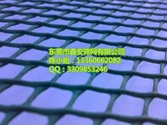 广东鑫安绿色塑料网