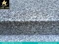 G603 G623 G664 G439 G687 G617 G641 Grainte Stairs Steps China Granite Stairs 1