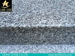 G603 G623 G664 G439 G687 G617 G641 Grainte Stairs Steps China Granite Stairs