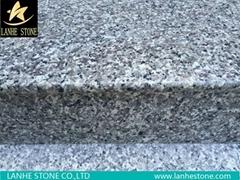 G603 G623 G664 G439 G687 G617 G641 Grainte Stairs Steps China Granite Stairs