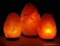 Crystal Himayalan Rock Salt Natural Lamps 4