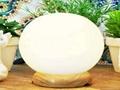 Himalayan Crystal Pure White Rock Salt Lamps 3