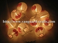 hallowee lantern LED decoration string lights color string lights lantern  4