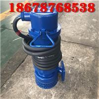 厂用潜水泵WQB15-22-2.2山东天然气项目施工用整机防漏防爆排污泵 2