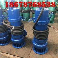 厂用潜水泵WQB15-22-2.2山东天然气项目施工用整机防漏防爆排污泵 3