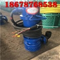 厂用潜水泵WQB15-22-2.2山东天然气项目施工用整机防漏防爆排污泵 4