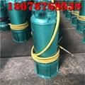 浙江建筑施工污水污物排污泵BQS30-58/2-11kw双叶轮防爆潜水泵 1