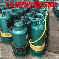 浙江建筑施工污水污物排污泵BQS30-58/2-11kw双叶轮防爆潜水泵 2