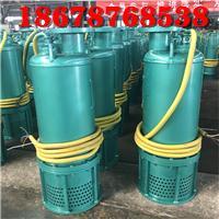 浙江建筑施工污水污物排污泵BQS30-58/2-11kw双叶轮防爆潜水泵 3