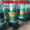 浙江建筑施工污水污物排污泵BQS30-58/2-11kw双叶轮防爆潜水泵 4