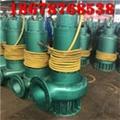 三项潜水排沙泵BQS20-50