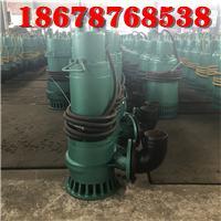 三项潜水排沙泵BQS20-50-7.5kw内蒙古煤矿用污水泥浆防爆排污泵 3