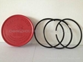 Single Cylinder  Piston Rings for diesel engine parts