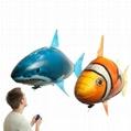 Air swimming fish遙控充氣飛魚 5