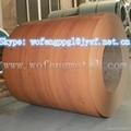 wood grain printed PPGI  PPGL steel in
