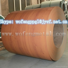 wood grain printed PPGI  PPGL steel in coil for building material
