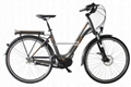 The Lover Electric Bike- Mountain Electric Bicycle for Man 2