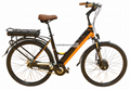 The Lover Electric Bike- Mountain Electric Bicycle for Man 3