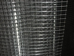 6'x100' Ga  anized Welded Wire Mesh and Utilty Fence